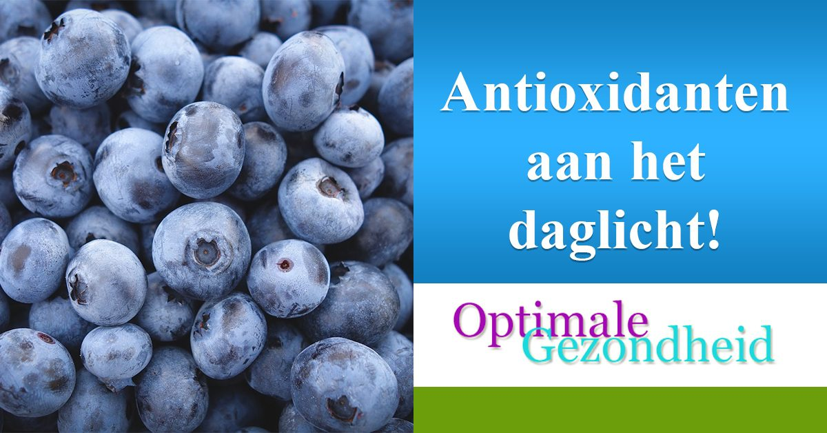 Informatie over antioxidanten