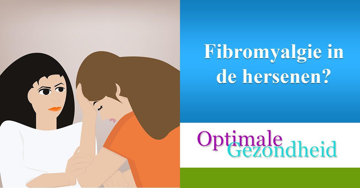 kan je fibromyalgie zien in de hersenen