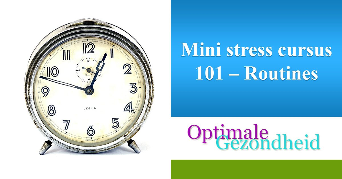 mini cursus stress