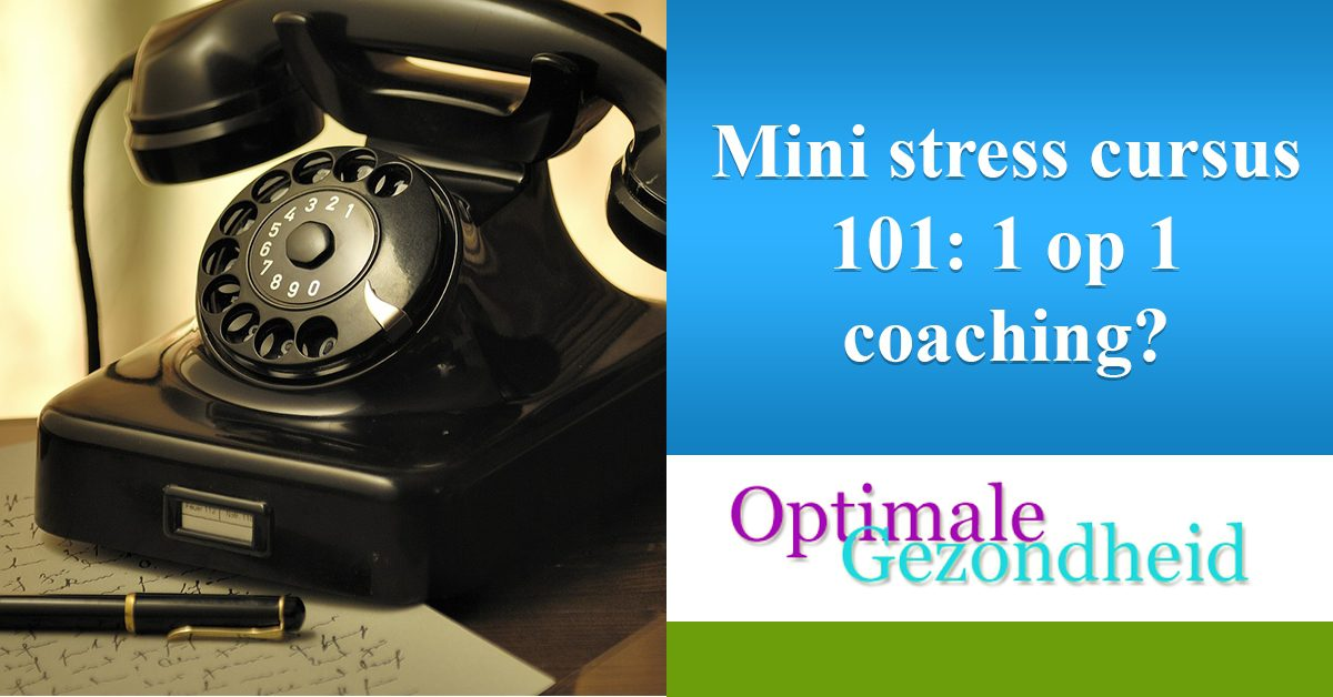 mini cursus stress coaching