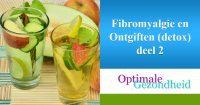 fibromyalgie en ontgiften