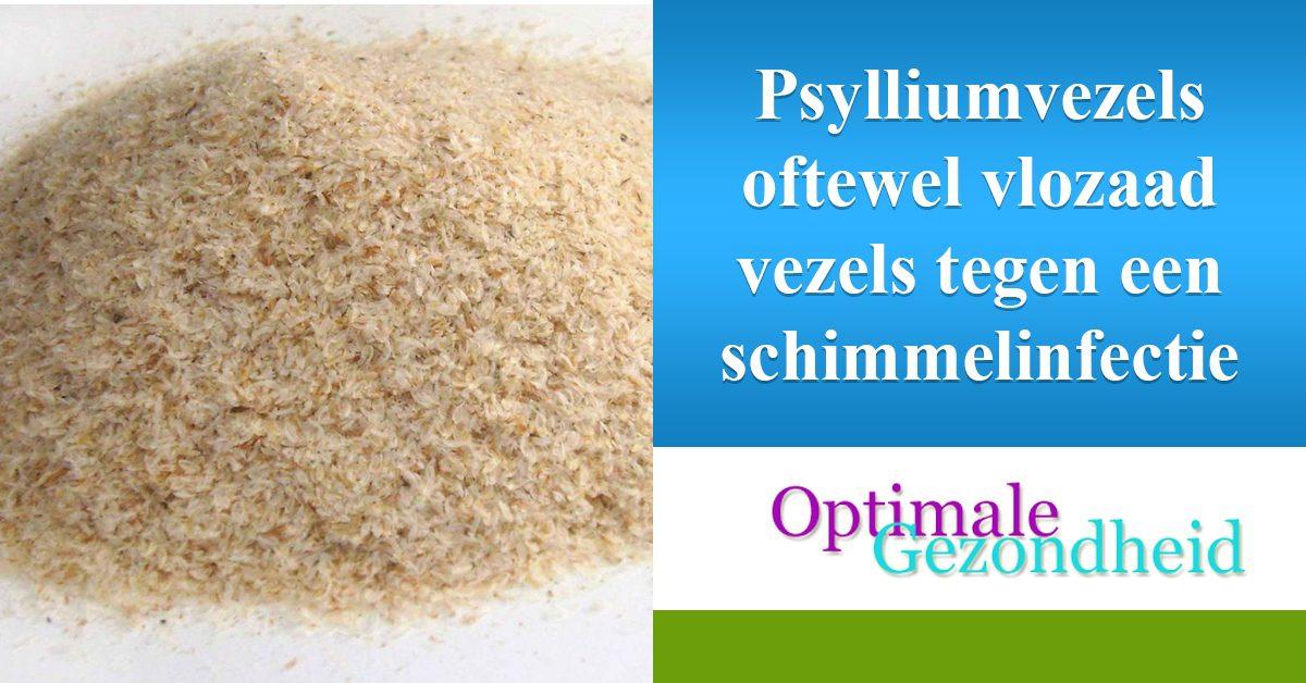 psylliumvezels tegen schimmelinfecties