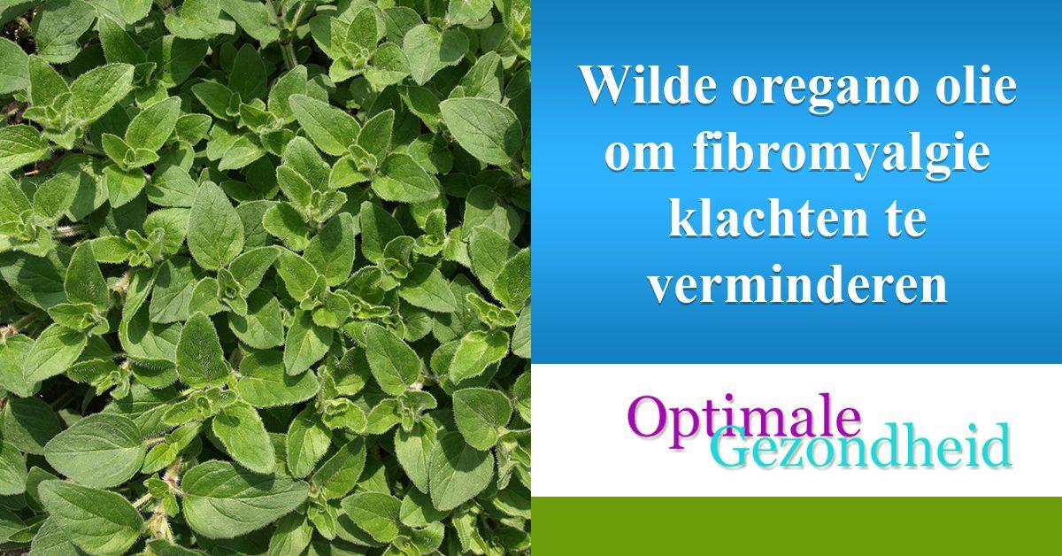 wilde oregano en fibromyalgie