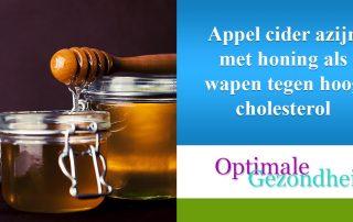appel cider azijn en cholesterol
