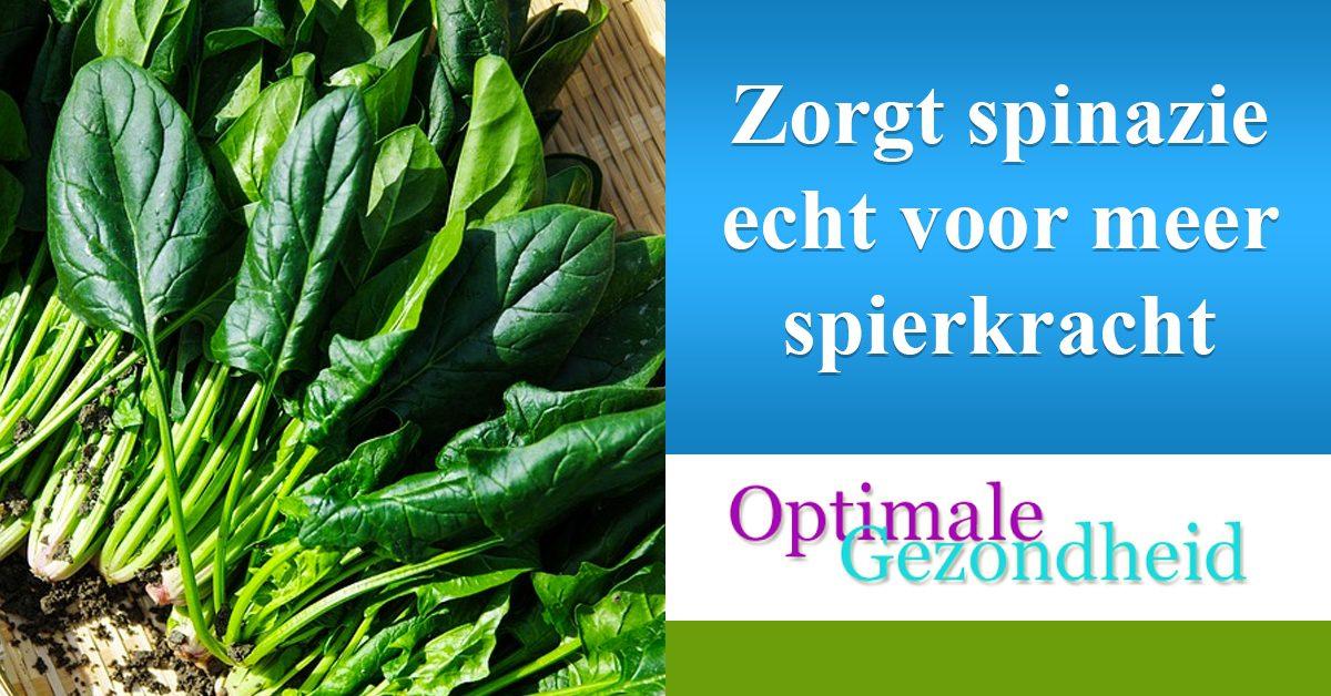 spinazie en spierkracht