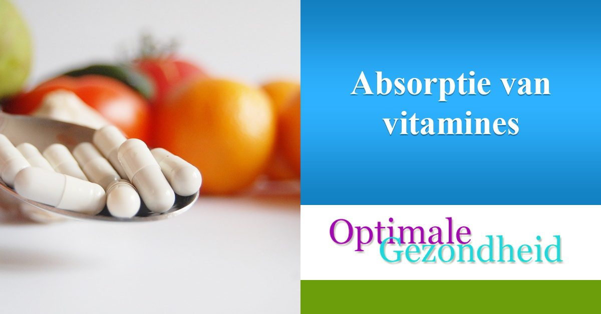 absorptie van vitamines