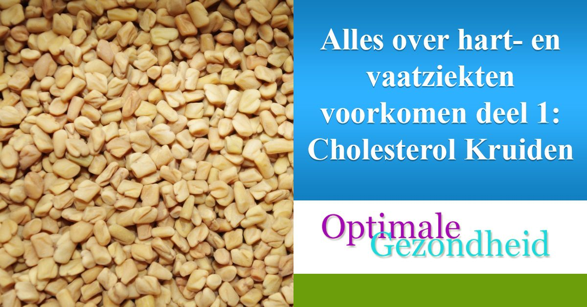 alles over hart- en vaatziekten cholesterol kruiden