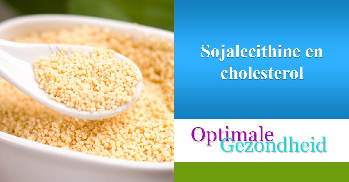 soja lecithine en cholesterol
