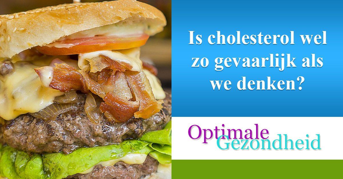hoe gevaarlijk is cholesterol