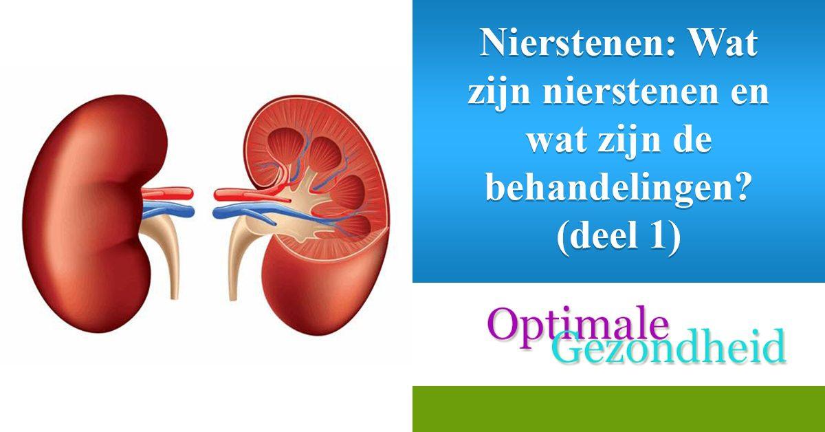 Nierstenen Wat Zijn De Symptomen Oorzaken En Behandeling