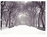 Winterperiode