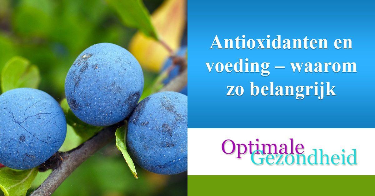 Antioxidanten en voeding – waarom zo belangrijk