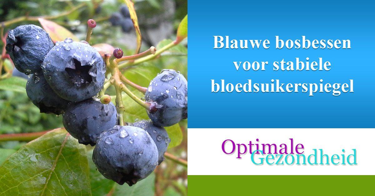 Blauwe bosbessen voor stabiele bloedsuikerspiegel