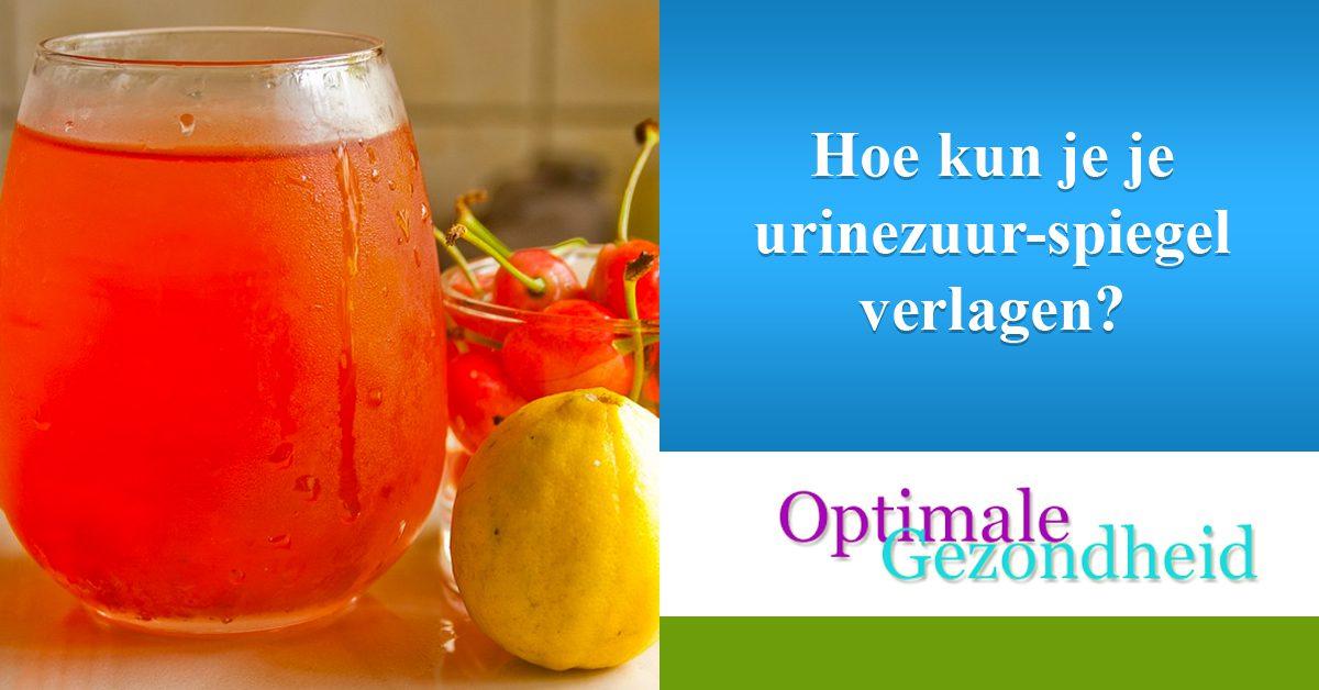 Hoe kun je je urinezuur-spiegel verlagen
