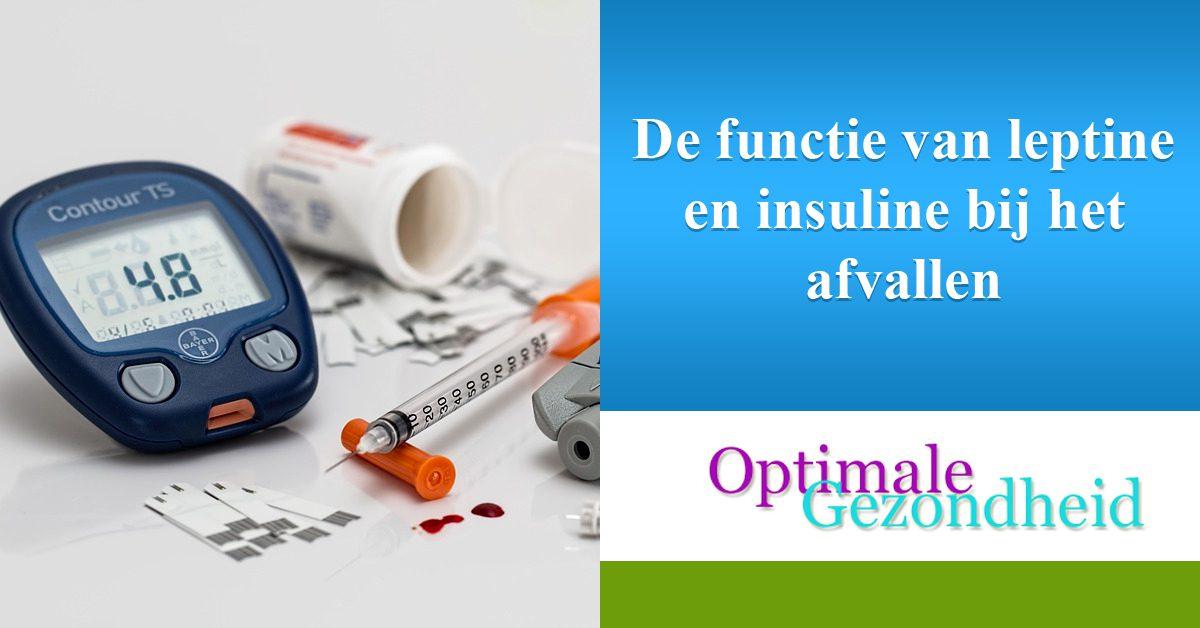 De functie van leptine en insuline bij het afvallen