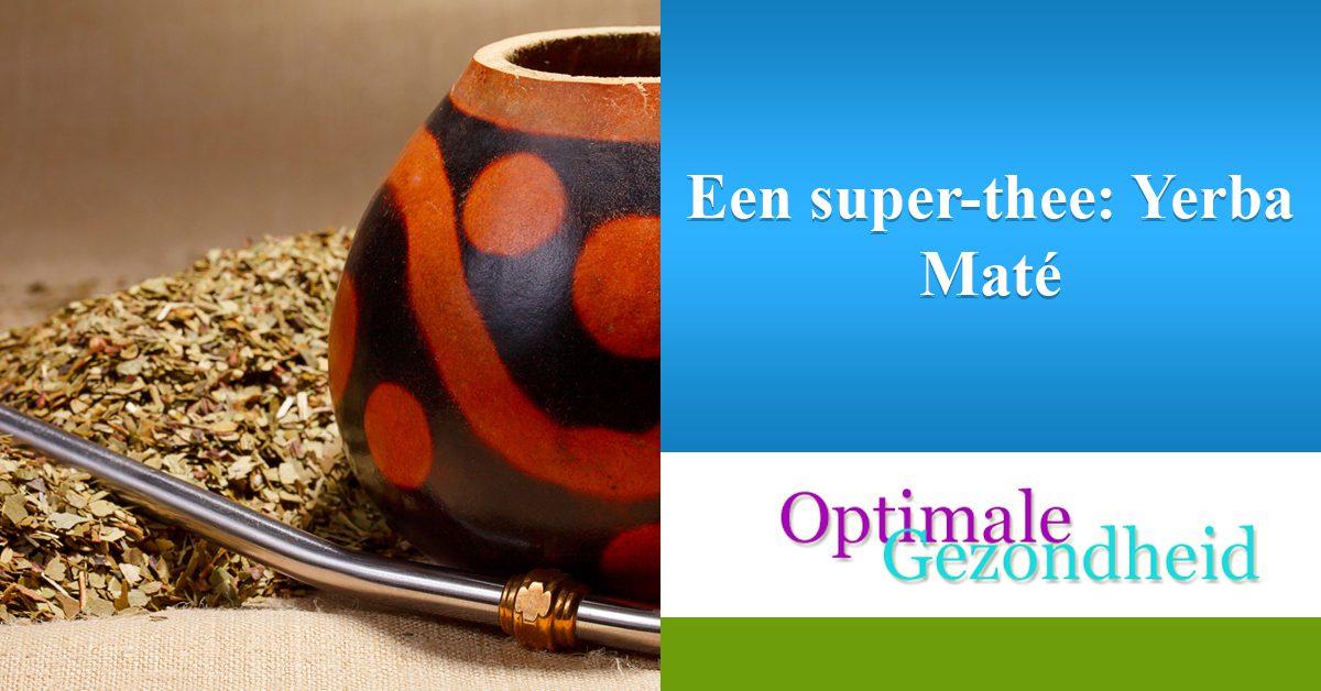 Een super-thee Yerba Maté