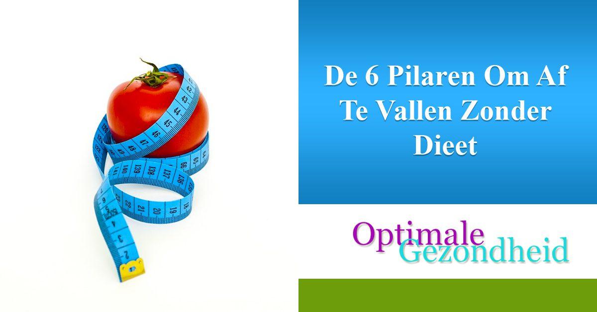 De 6 Pilaren Om Af Te Vallen Zonder Dieet