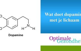 Wat doet dopamine met je lichaam