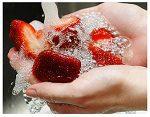 fruit wassen