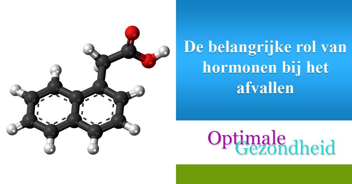 De belangrijke rol van hormonen bij het afvallen