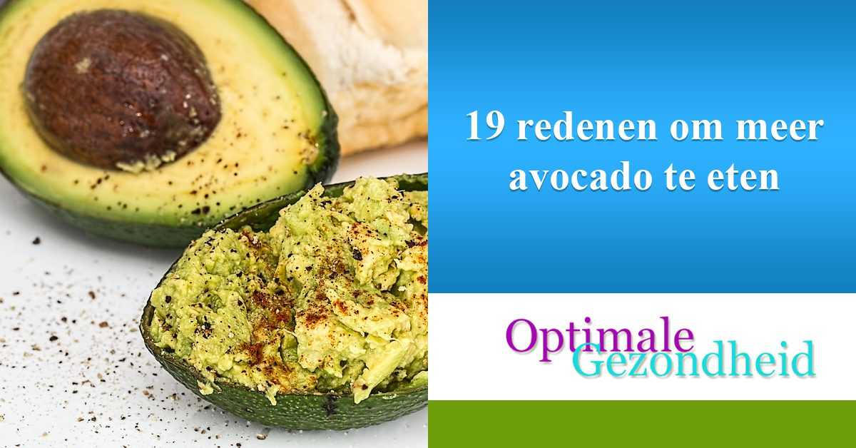 19 redenen om meer avocado te eten