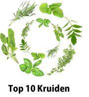 top 10 kruiden tegen hoge bloeddruk