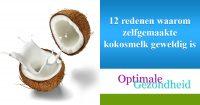 12 redenen waarom zelfgemaakte kokosmelk geweldig is