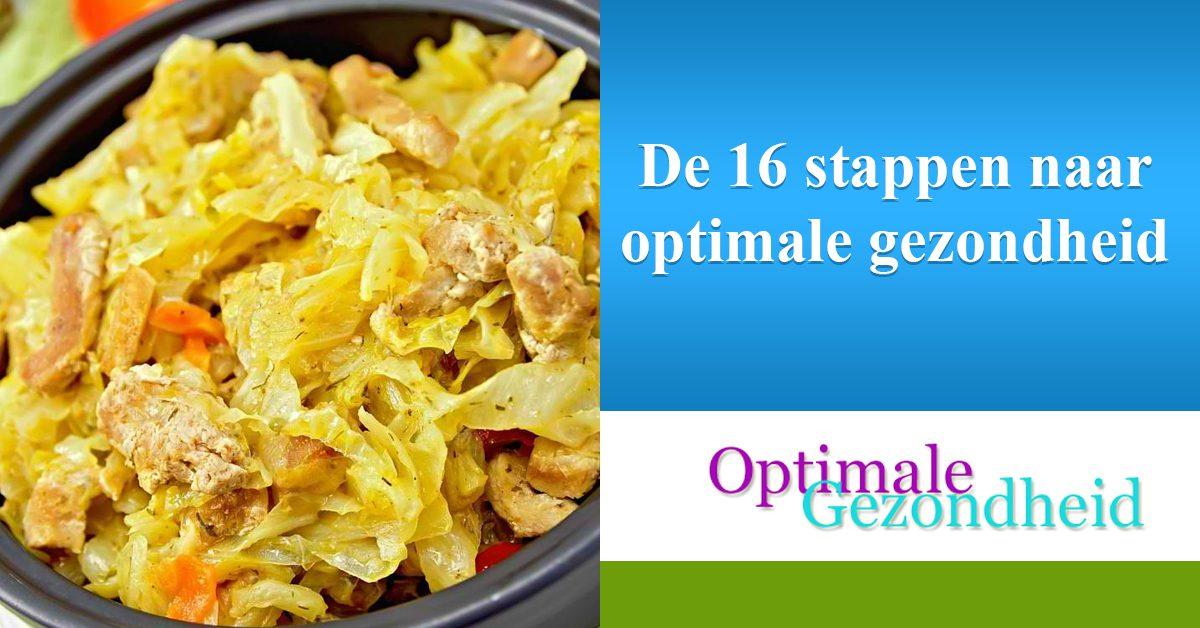 De 16 stappen naar optimale gezondheid