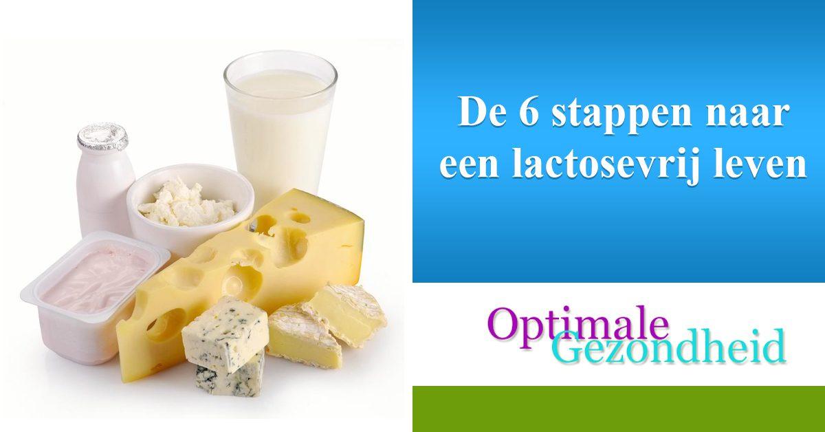 De 6 stappen naar een lactosevrij leven