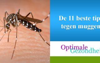 De 11 beste tips tegen muggen