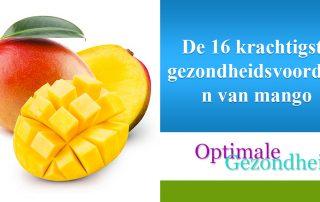 De 16 krachtigste gezondheidsvoordelen van mango