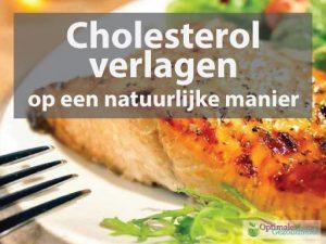 cholesterol verlagen zonder statines