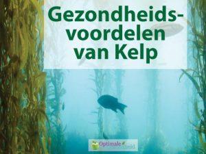 kelp tabletten gevaarlijk
