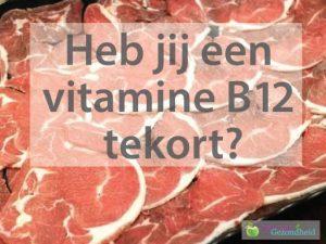 voeding met veel vitamine b12