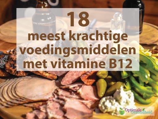 waar zit b12 in voeding