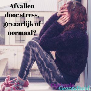 niet afvallen door stress