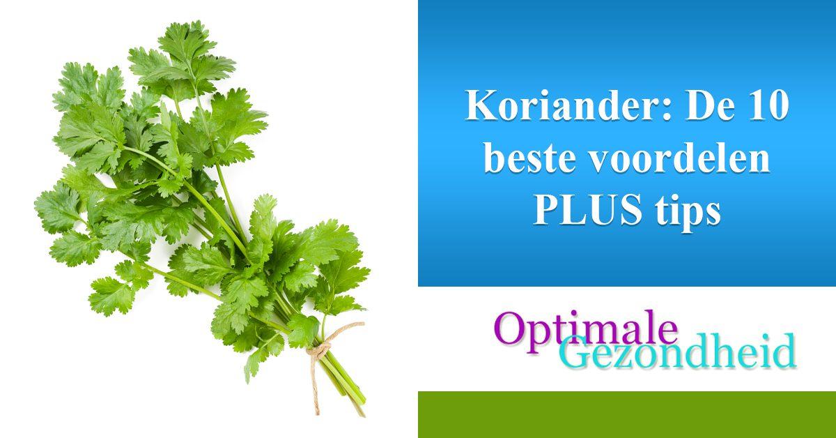 Koriander-De 10 beste voordelen PLUS tips