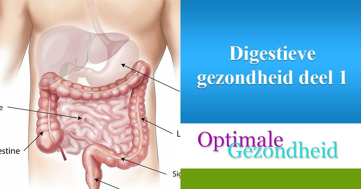 Digestieve gezondheid deel 1
