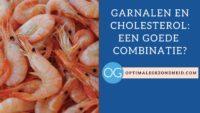 garnalen en cholesterol