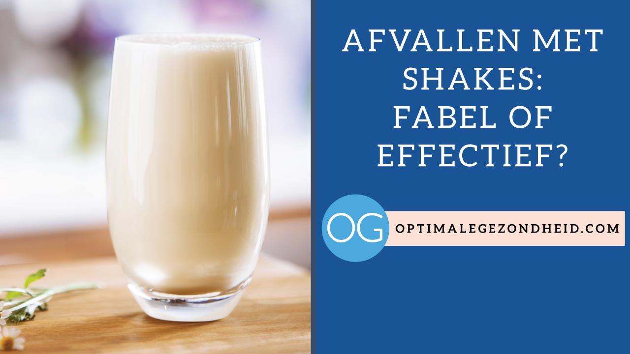 beste shakes afvallen