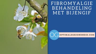fibromyalgie behandeling met bijengif
