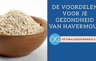 gezondheidsvoordelen van havermout + recepten