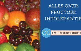 Alles over fructose intolerantie