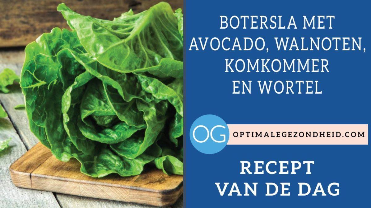 Recept van de dag: Botersla, avocado, walnoten, komkommer en wortel