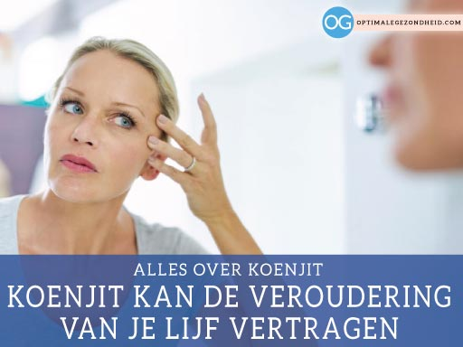 Alles over koenjit