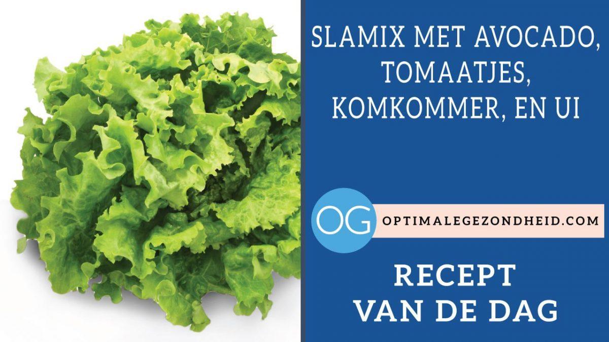 Recept van de dag: Slamix met avocado, tomaatjes, komkommer, en ui