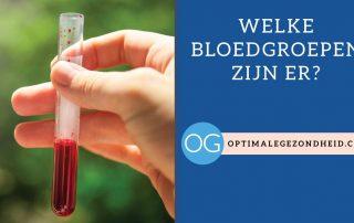 Welke bloedgroepen zijn er?