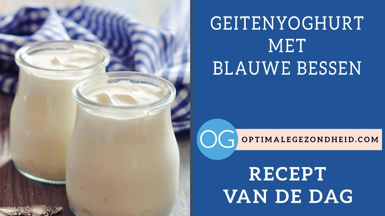 Recept van de dag: Geitenyoghurt met blauwe bessen