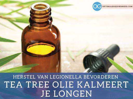 Wat is legionella? + 12 tips voor sneller herstel!