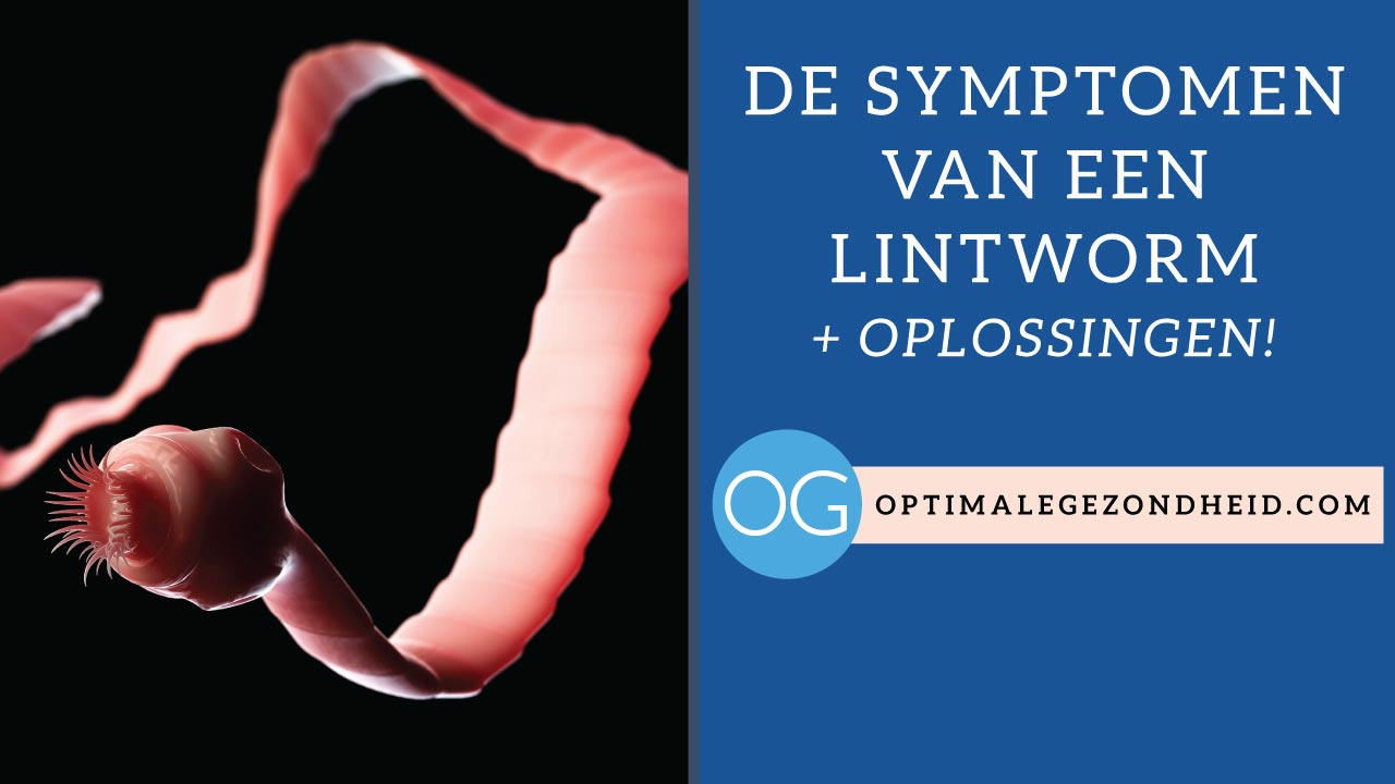De symptomen een lintworm + oplossingen!